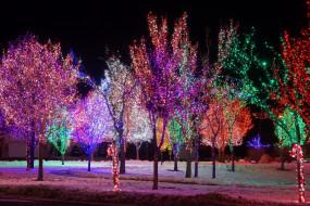 праздничные, новогодние пейзажи, иллюминация, деревья