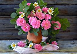 цветы, букеты,  композиции, ромашки, розы