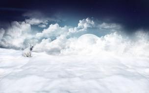 разное, компьютерный дизайн, белый, полярный, облака, снег, планета, медведь