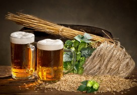 еда, напитки,  пиво, бокалы, зерна, хмель, напиток