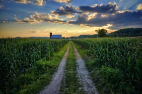обои для рабочего стола 2048x1365 природа, дороги, закат, поле, дорога, пейзаж