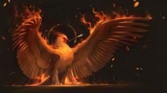 рисованное, животные,  сказочные,  мифические, феникс, птица, крылья, phoenix, стрела, арт, огонь