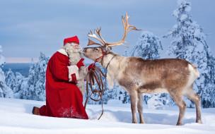 праздничные, дед мороз,  санта клаус, снег, санта, олень