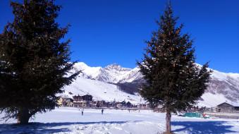 города, - пейзажи, елки, снег, горы, зима, шишки