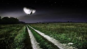 полёт на шабаш, разное, компьютерный дизайн, ночь, поле, ведьма, баба-яга, луна, звёзды