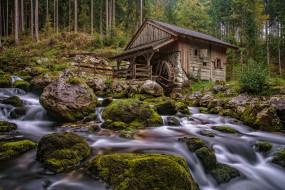 разное, мельницы, река, лес