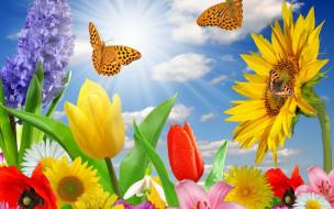 разное, компьютерный дизайн, гиацинт, тюльпаны, ромашки, лучи, одуванчик, облака, небо, маки, подсолнух, бабочки, цветы