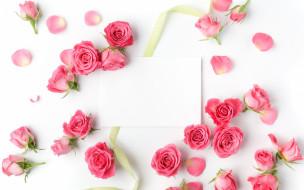 цветы, розы, лента, бумага, бутоны