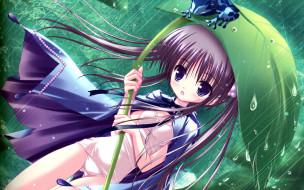 аниме, unknown,  другое, лягушка, лист, дождь, плащ, девочка