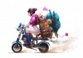аниме, оружие,  техника,  технологии, гольфы, акита-ину, портфель, флажок, очки, катана, девушка, вещи, чемодан, мотоцикл, шлем, арт, wen, juinn, собака