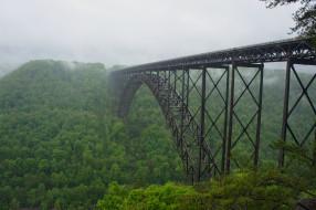 города, - мосты, мост, лес