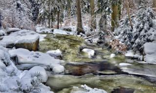 природа, реки, озера, камни, деревья, снег, поток