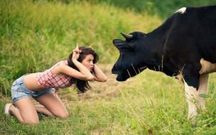 травка, бодает, корова, Девушка, рожки