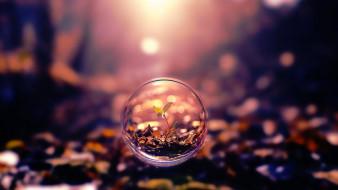 разное, компьютерный дизайн, растение, пузырь, листок