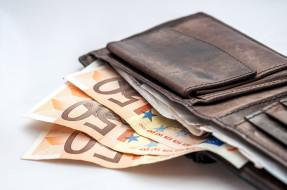 разное, золото,  купюры,  монеты, бумажник, банкноты, евро