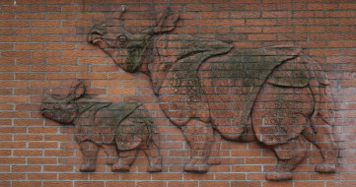 разное, - другое, носороги, кирпич, стена