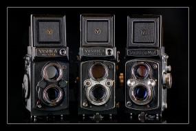 yashica mat family, бренды, бренды фотоаппаратов , разное, фотокамера