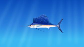 рисованное, животные,  рыбы, морская, рыба, марлин, на, голубом, фоне
