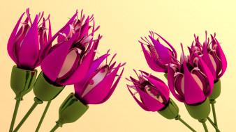 3д графика, цветы , flowers, фон, лепестки
