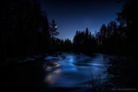 река, лес, ночь