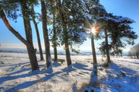 обои для рабочего стола 2048x1365 природа, зима, снег
