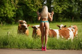 девушки, -unsort , блондинки, коровы, попка, трава, туфли
