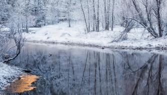 природа, зима, лес, река, иней
