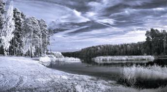 природа, зима, лес, озеро, иней