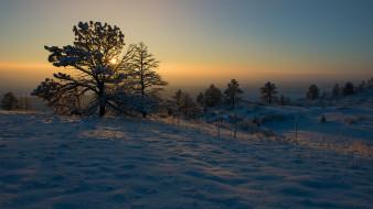 обои для рабочего стола 2048x1152 природа, зима, снег