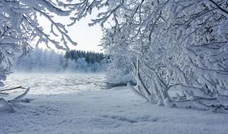 обои для рабочего стола 2048x1208 природа, зима, снег, озеро, лес, деревья, кусты, ветки