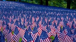 разное, флаги,  гербы, много, америка