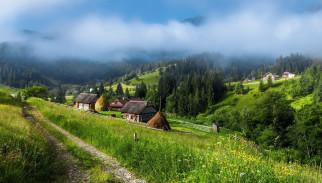 пейзаж в украинских карпатах, природа, пейзажи, деревья, дорога, туман, село, горы
