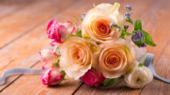 цветы, розы, нежность