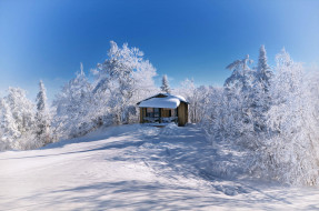 природа, зима, холм, снег, деревья, домик