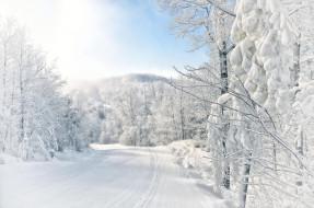 природа, зима, дорога, лес, деревья, пейзаж