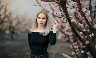 девушки, -unsort , блондинки, дерево
