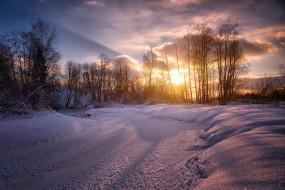 природа, зима, снег, деревья