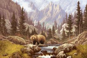 рисованное, животные, горы, река, медведь, бурый, лес, хищник
