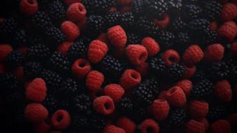 еда, фрукты,  ягоды, ежевика, малина