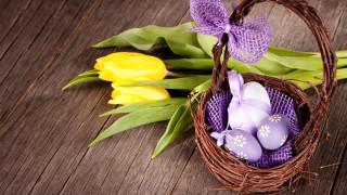 праздничные, пасха, корзинка, писанки, бант, тюльпаны
