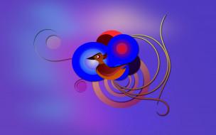векторная графика, животные , animals, узор, фон, цвета, птица