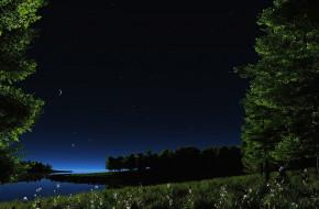 3д графика, природа , nature, трава, цветы, деревья, месяц, звёзды, небо, ночь