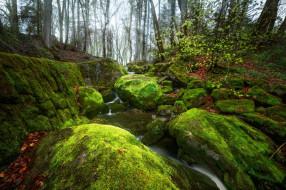 обои для рабочего стола 2048x1363 природа, реки, озера, ручей, скалы, речка, деревья, лес