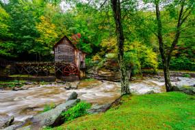 разное, мельницы, лес, река