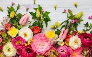 обои для рабочего стола 2560x1600 цветы, разные вместе, ранункулюс, эустома, альстромерия