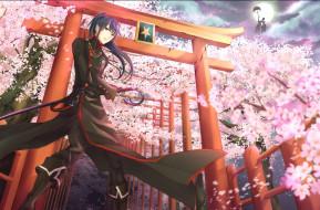 аниме,  gray-man, воин, экзорцист, kanda, меч, оружие, луна, сакура, граф, зонт