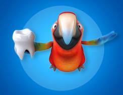 попугай, зуб