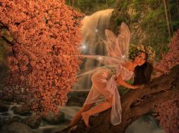 фэнтези, феи, фон, крылья, взгляд, девушка