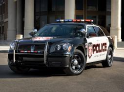 автомобили, полиция