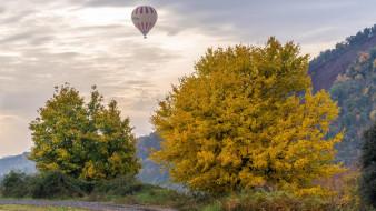 поле, Осень, деревья, закат, дорога